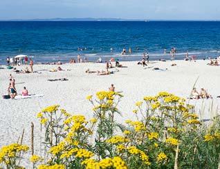 Hornbæk strand