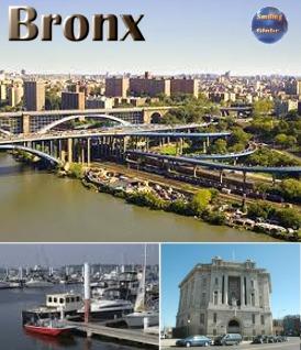 Bronx New York City New York State