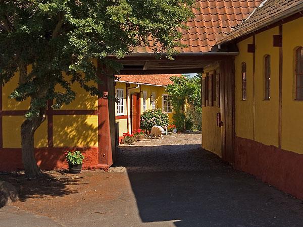 Svaneke Visit Bornholm Capital Region Of Denmark Denmark