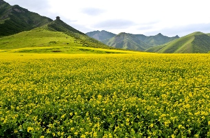 Gansu Province China Northwest