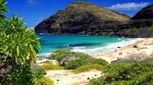 Lagune Oahu Hawaii