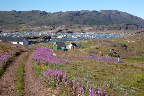 South GreenlandNarsarsuaq