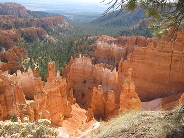 Glacier, Yellowstone, Tetons, Zion, Yosemite Bryce & Grand Canyon & Death Valley Danmark