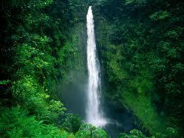 Hawaii Akaka falls Hawaii