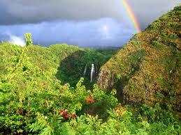Hawaii The Rainbow Falls