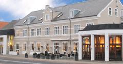 Hotel Blicher Ry