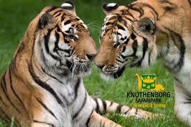 Knuthenborg Safaripark Maribo