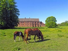 Esrum monastery Græsted