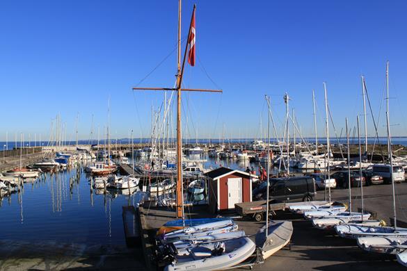 Sildens Dag på Hornbæk Havn Hornbæk