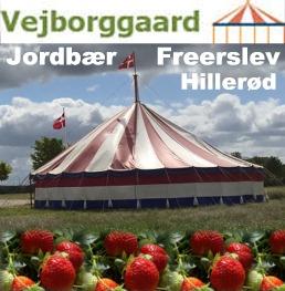 Jordbærcentret Vejborggård Freerslev Hillerød Hillerød