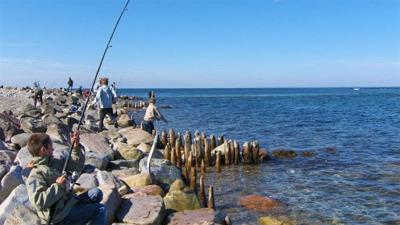 lystfiskeri for børn Vestjaelland Denmark