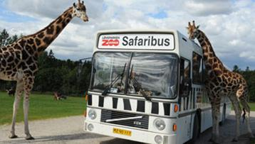 Givskud Zoo og safaripark Give
