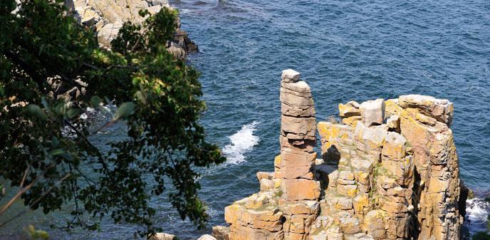klippeknude i nordvestjylland