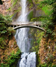 imgattraction/Multnomah Falls-4.jpg
