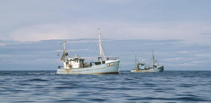 Lystfiskeri Bornholm