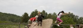 Nordsjællands Fuglepark for børn Græsted