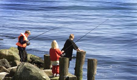 Lystfiskeri Skagen Nordjylland Skagen