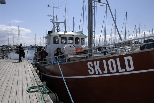 Havfiskeri Vedbæk