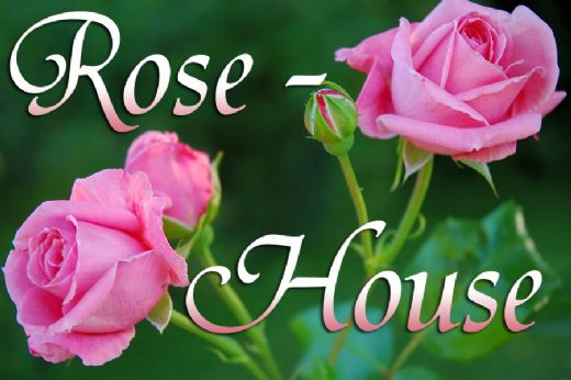 Rose-House Hillerød Bed and Breakfast Hilleroed